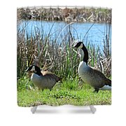 Spring In The Wetlands Shower Curtain