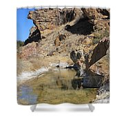 Spring In Vogel Canyon Shower Curtain