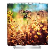 Spring Is A New Beginning Shower Curtain