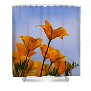 Spring Is A Poppin' Shower Curtain