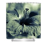 Spring Is Coming - Monochrome Shower Curtain