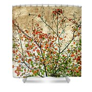 Spring Is Gone Shower Curtain