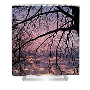 Spring Is On The Way Shower Curtain