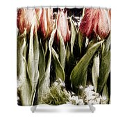 Spring Is Welcome Xx Shower Curtain