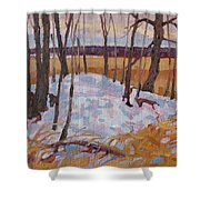 Spring Island Shower Curtain