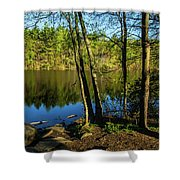 Spring It The Woods Shower Curtain