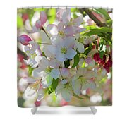 Cherry Kisses Shower Curtain