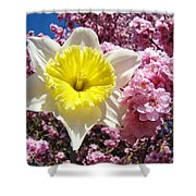 Spring Landscape Pink Tree Blossoms Yellow Daffodils Baslee Troutman Shower Curtain
