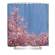 Spring Landscape Pink Trees Blossoms Blue Sky Baslee Troutman Shower Curtain