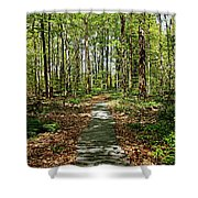 Spring Light And Shadow Shower Curtain