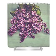 Spring Lilacs Shower Curtain