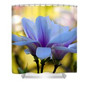 Spring Magnolia Shower Curtain