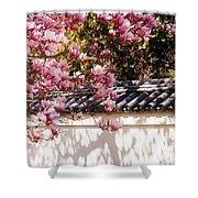 Spring - Magnolia Shower Curtain