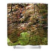 Spring Maple Leaves Over Japanese Garden Pond Shower Curtain