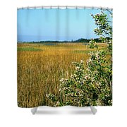 Spring Marsh Shower Curtain