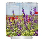 Spring Meadow With Flowers Nature Scene Shower Curtain