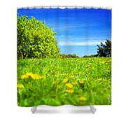 Spring Meadow With Green Grass Shower Curtain