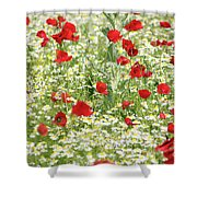 Spring Meadow With Poppy And Chamomile Flowers Shower Curtain