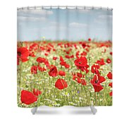 Spring Meadow With Wild Flowers Shower Curtain