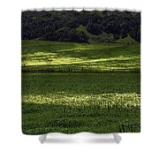 Spring Meadows Of Wildflowers Shower Curtain