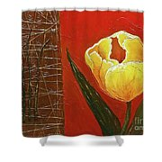 Spring Messenger Shower Curtain by Phyllis Howard