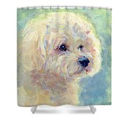 Spring Mickee Shower Curtain
