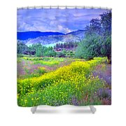 Spring Morning Along The Channel Parkway Shower Curtain
