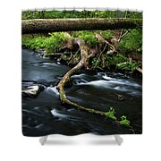 Spring Morning At Crum Elbow Creek I Shower Curtain