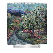 Spring Mountain Flowers Shower Curtain