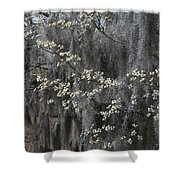 Spring Mystery Shower Curtain