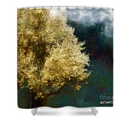 Spring Nor'easter Shower Curtain