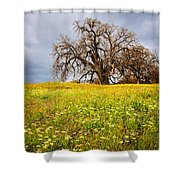Spring Oak Tree And Wildflowers Shower Curtain