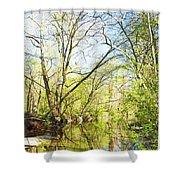 Spring On A Pennsylvania Stream, Fairmount Park, Philadelphia Shower Curtain
