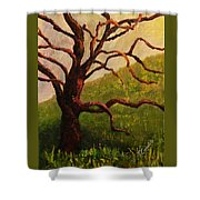 Spring On Figueroa Mt. Shower Curtain