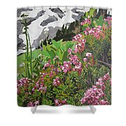 Spring On Mount Rainier Shower Curtain