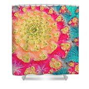 Spring On Parade 2 Shower Curtain