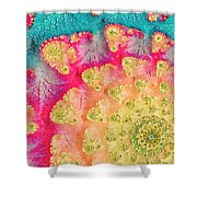 Spring On Parade Shower Curtain