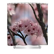 Spring On The Air Shower Curtain