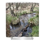 Spring On The Sherbrook Shower Curtain