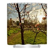Spring Orchard In Williamsburg Shower Curtain