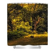 Spring Outing Shower Curtain by Jessica Jenney
