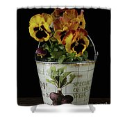 Spring Pansy Flowers In A Pail Shower Curtain