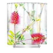 Spring Pastel Shower Curtain