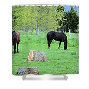 Spring Pastures Shower Curtain