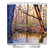 Spring, Pennypack Creek, Pennsylvania Shower Curtain