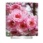 Spring Pink Tree Blossoms Art Prints Baslee Troutman Shower Curtain