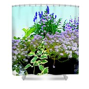Spring Planter Shower Curtain