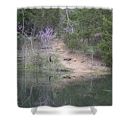 Spring Pond Shower Curtain
