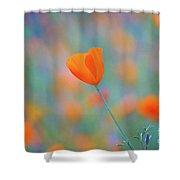 Spring Poppy Shower Curtain
