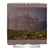 Spring Rain In The Sonoran  Shower Curtain